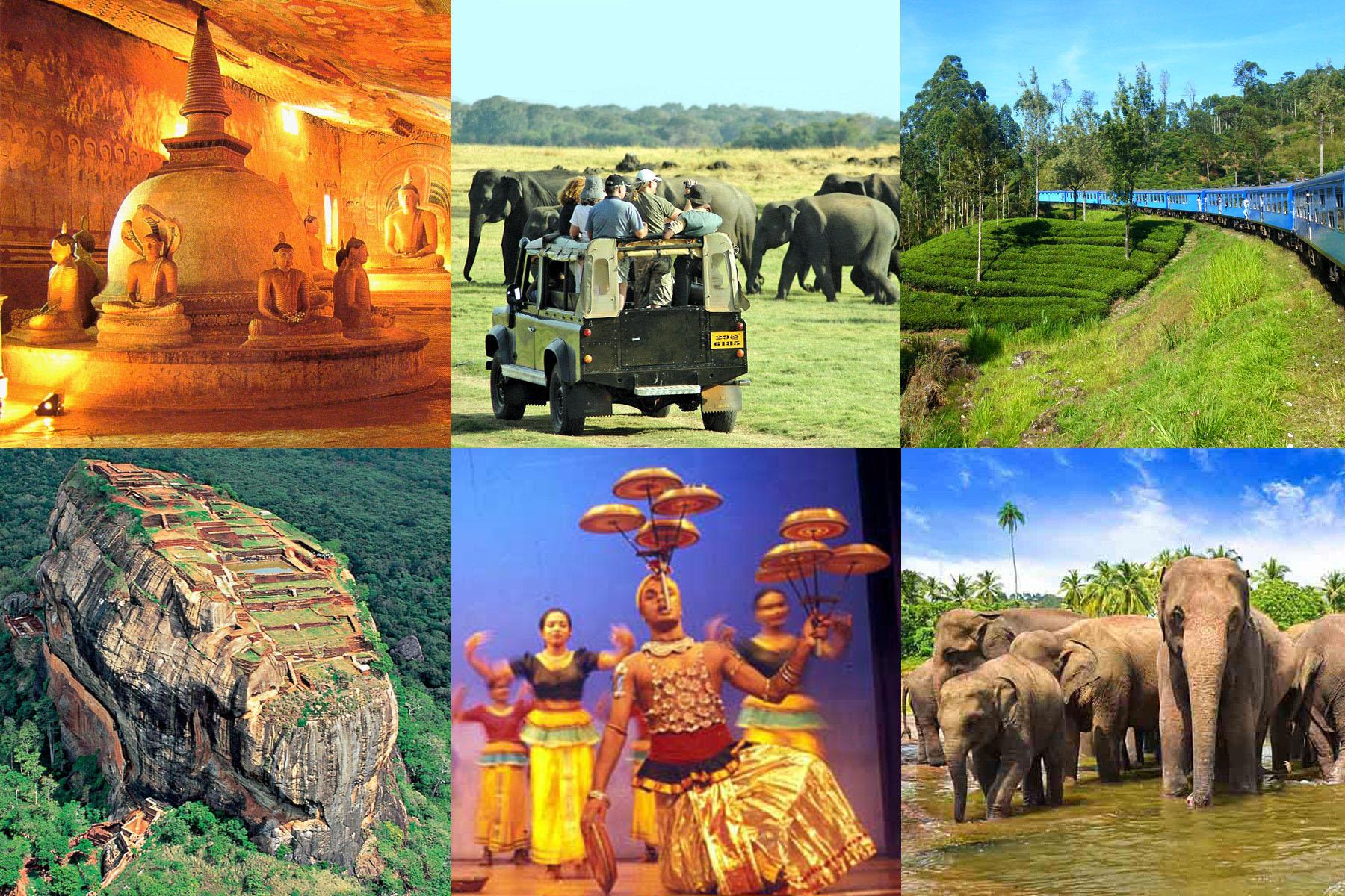 3つの世界遺産 ミンネリヤ国立公園ジープサファリ 高原列車 大満足の4泊ツアー