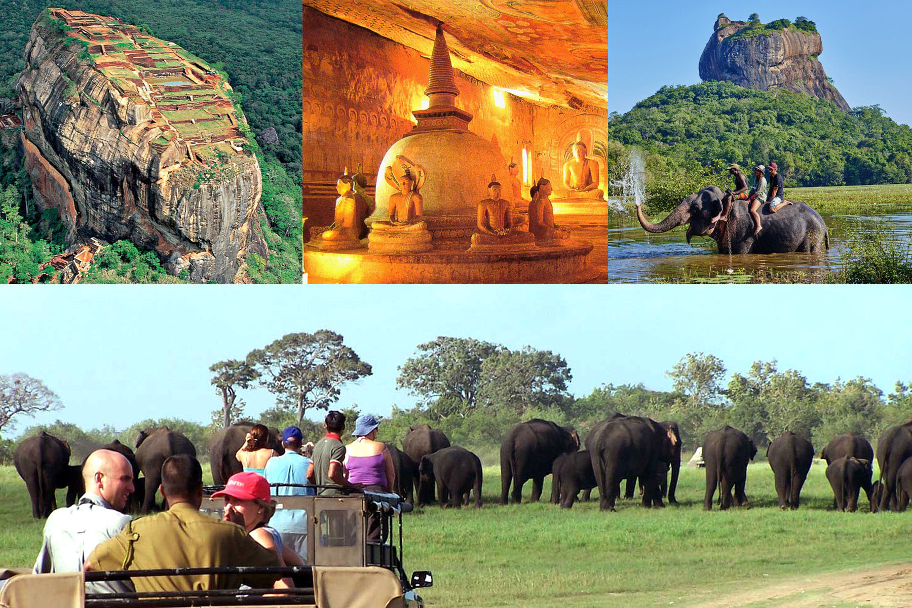 2つの世界遺産 ミンネリヤ国立公園ジープサファリ象乗り体験2泊ツアー