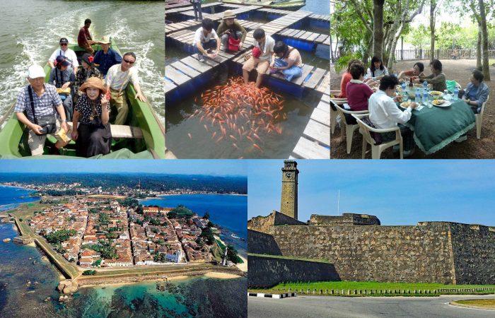 マードゥ河 ボートサファリ 体験 世界遺産ゴール観光 日帰りツアー