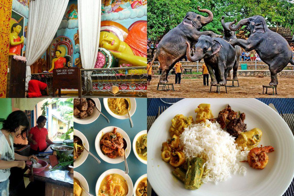 スリランカカレー作り 体験 お寺参拝 デヒワラ動物園へ 行く 日帰り ツアー