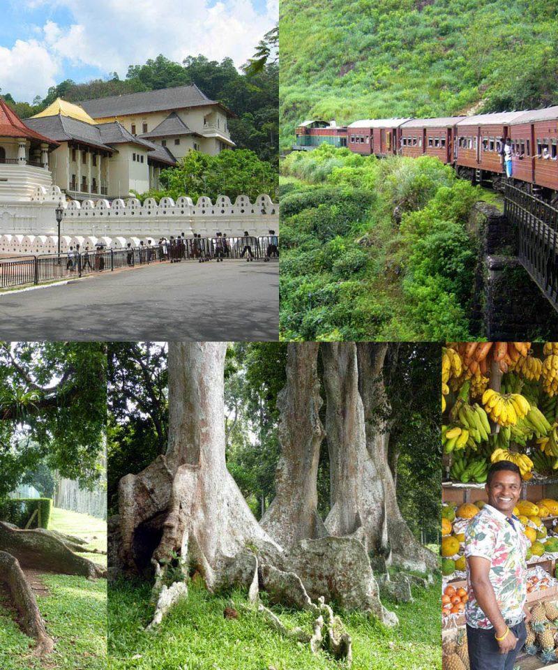 コロンボから列車で キャンディへ 観光の旅 日帰りツアー