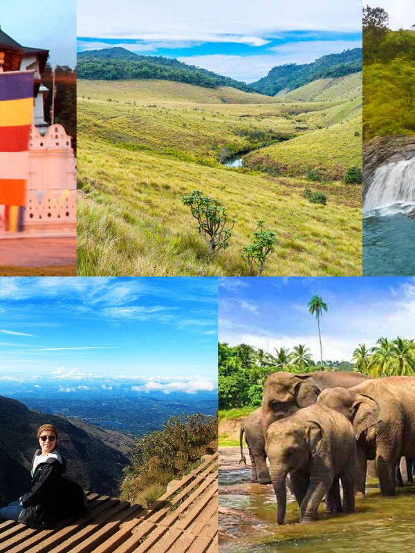 ホートンプレインズ国立公園でトレッキングとキャンディ市内観光と象の孤児院を楽しむ1泊ツアー